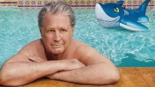 Download Brianism compilation (Brian Wilson funny moments!) Video