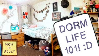 Download Dorm Life Essentials: What to Pack for College Dorms! Video
