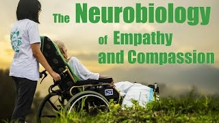 Download The Neurobiology of Empathy and Compassion: Dr. Bill Mobley Sages and Scientists 2016 Video