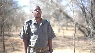 Download Marakele National Park Video
