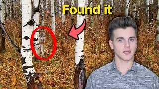 Download Can You Find These Hidden Animals? Video
