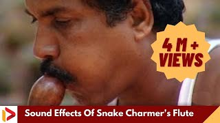 Download Sound Effects Of Snake Charmer's Flute | Music of Makudi | Snake Music Video