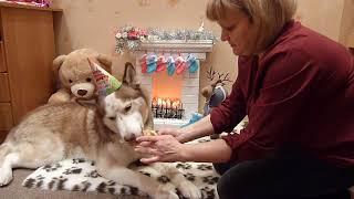 Download Кен 5 лет. Поедаем торт!!! Video