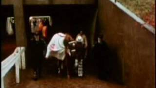 Download SECRETARIAT - Big Red's Last Race - Part II Video