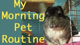 Download My Morning Pet Routine Video