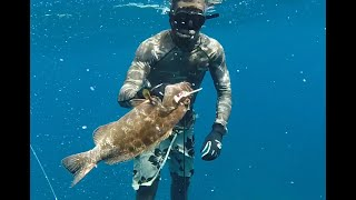 Download Caribbean Reef Spearfishing Video