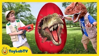 Download Giant T-Rex Dinosaur Surprise Egg! Toys Opening for Children In Family Fun Kids Dinosaurs Video Video