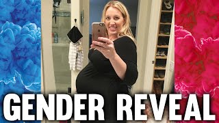Download FAMILY FUN PACK BABY GENDER REVEAL!! Video