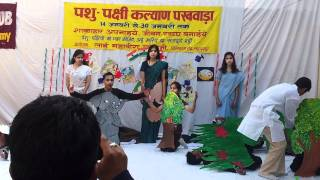 Download Save Animals, Save Environment, Save Mankind (One Act Pay) Video