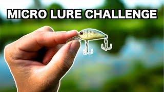 Download MICRO Lure Fishing Challenge!!! (Tiny Baits) Video