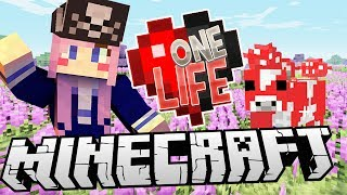 Download We Must Find a Melon! | Ep. 5 | Minecraft One Life Video