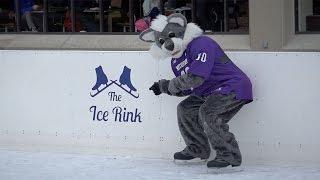 Download Northwestern ice skating rink grand opening Video