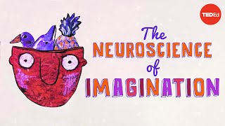 Download The neuroscience of imagination - Andrey Vyshedskiy Video