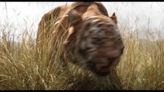 Download The Jungle Book (2016) - Trailer Video