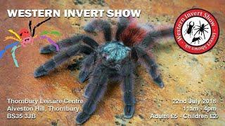 Download Western Invert Show - Invert Show UK Video