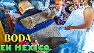 Download BODA MEXICANA TRADICIONAL QUE NO DEBES DEJAR DE VER Video