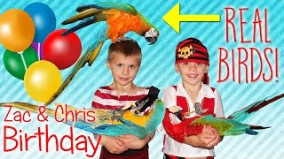 Download Birthday Party Time!! TWINS Best-Ever Pirate & Parrots Party Games Cake Fun Video