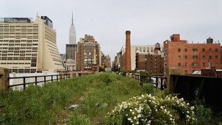 Download Liz Diller | The High Line | NYC Video