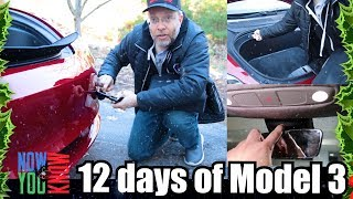 Download Lots of Little Goodies - 12 days of Model 3! Video