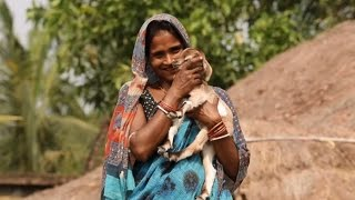 Download In Rural India, Women Lead the Way to Improve Livelihoods Video