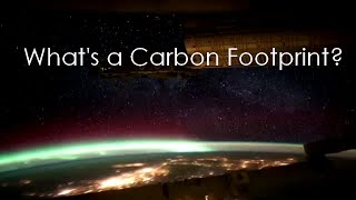 Download What is a Carbon Footprint Video