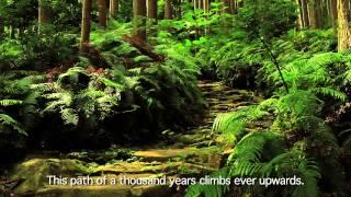 Download [Beautiful Japan] World Heritage Kumano Kodo Pilgrimage Routes Video