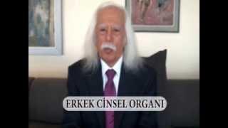 Download Dr. Haydar Dümen - Erkek Cinsel Organı Video