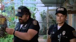 Download Супер полицейские Майами (комедия) 1985 Video