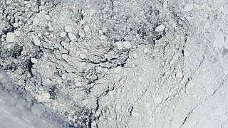 Download Arctic Sea Ice Is the Thinnest and Youngest It's Been in 60 Years Video