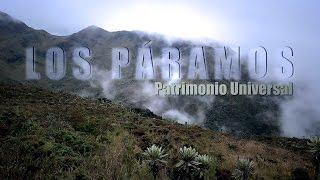 Download VIDEO LOS PÁRAMOS, PATRIMONIO UNIVERSAL Video