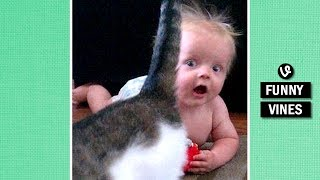Download IMPOSSIBLE TRY TO STOP LAUGHING challenge - Super FUNNY BABY & ANIMAL VINE compilation Video