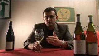 Download Sancerre Wines On This BRISK Fall DAY! - Episode#342 Video