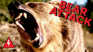 Download Rampaging Bear Attacks Family! Do They Survive? Video
