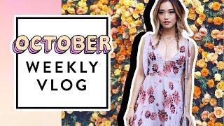 Download October Weekly Vlog Video