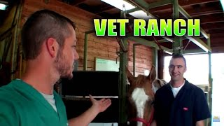 Download New Large Animal Vet on Vet Ranch! Video
