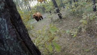 Download Bear Attack, Man is trying to run away from attacking Bear: GoPro Video