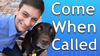Download How to Train your Dog to Come When Called Video