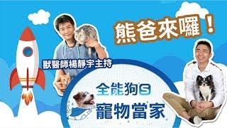 Download '19.03.18【全能狗S 寵物當家】熊爸來囉!教你如何訓練家中狗狗 Video