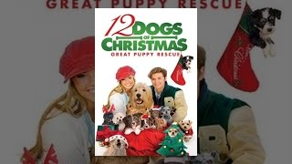 Download 12 Dogs Of Christmas: Great Puppy Rescue Video