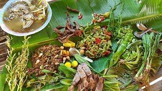 Download กินข้าวป่า นาน้องบาส Video