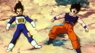 Download TFS - Vegeta and Goku get hit in the D***! Video