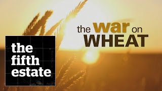 Download The War on Wheat - the fifth estate Video