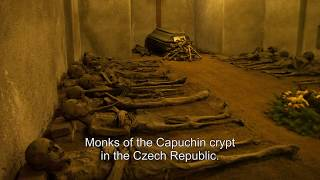 Download The Mummified Remains of Priests, Monks, and Relics of Holy Men and Women Video