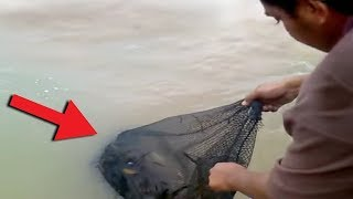 Download 10 Scary Fishing Videos Caught on Camera! Video