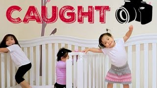 Download CAUGHT ON CAMERA! - February 21, 2016 - ItsJudysLife Vlogs Video