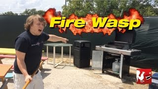 Download Fire Wasp - RT Life Video