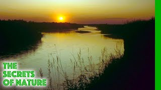 Download Drava - River of Peace River of World Video