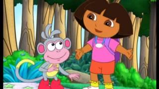 Download Dora's Big Birthday Adventure Video