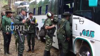 Download Colombia: FARC guerrillas begin demobilisation process Video