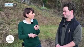 Download Valérie Zago nous fait découvrir le domaine Barmès-Buecher Wettholsheim Video